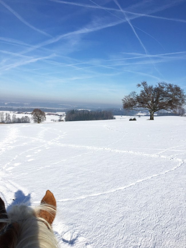 schnee-ausritt