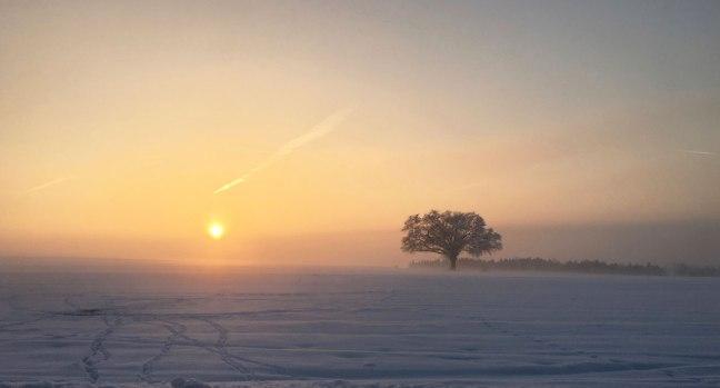 winter-abend