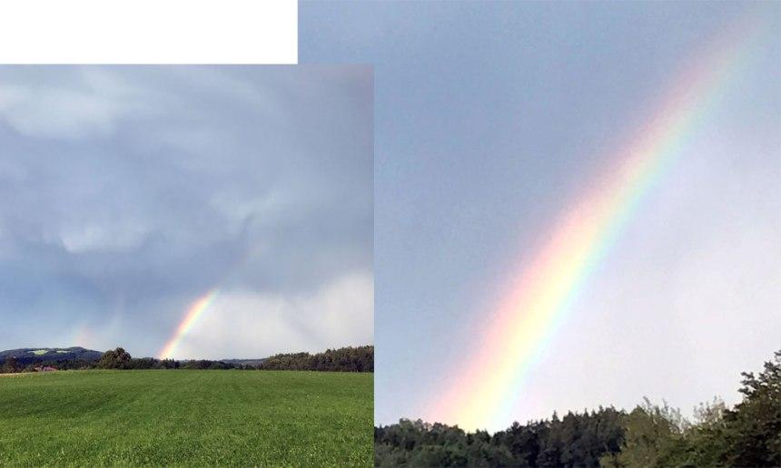 rainbow-coll