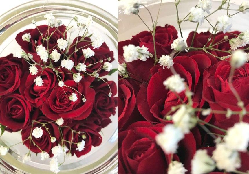 rosen-rot-coll1.jpg