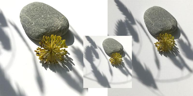 bilder-coll3.jpg