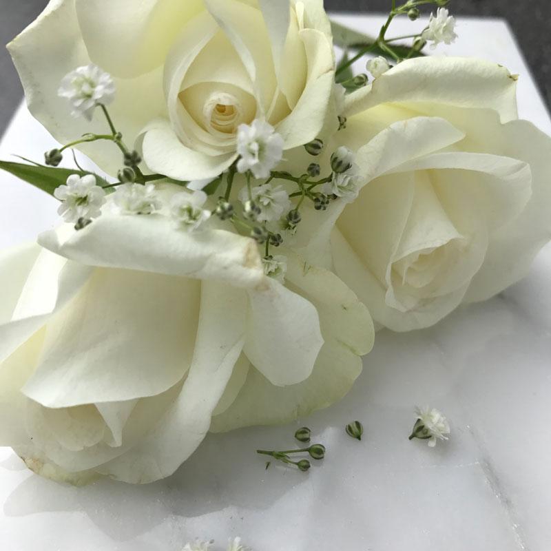 rosen-marmor1