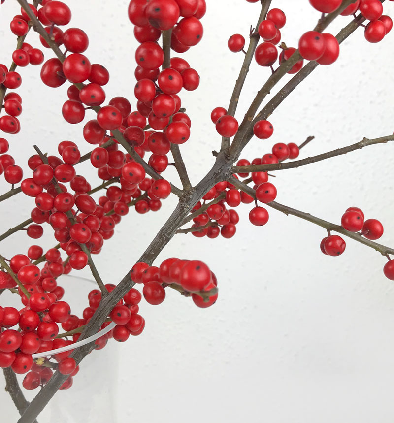 advent-beeren31