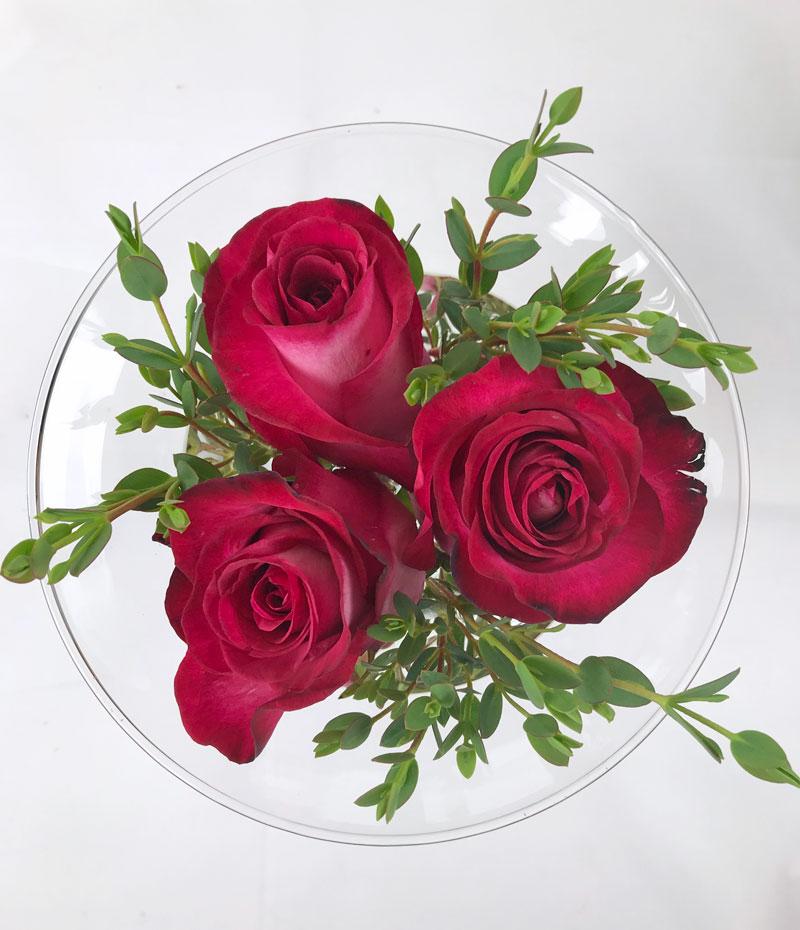 rosen15.jpg