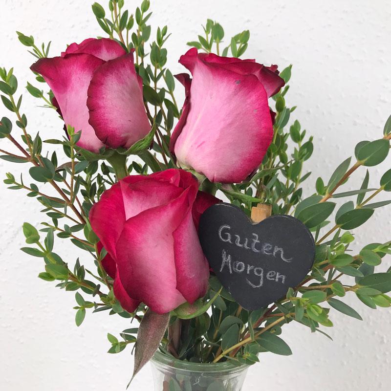 rosen20.jpg