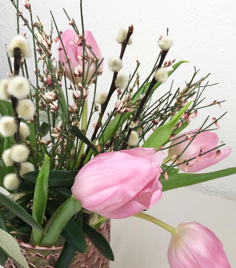 tulpen23.jpg