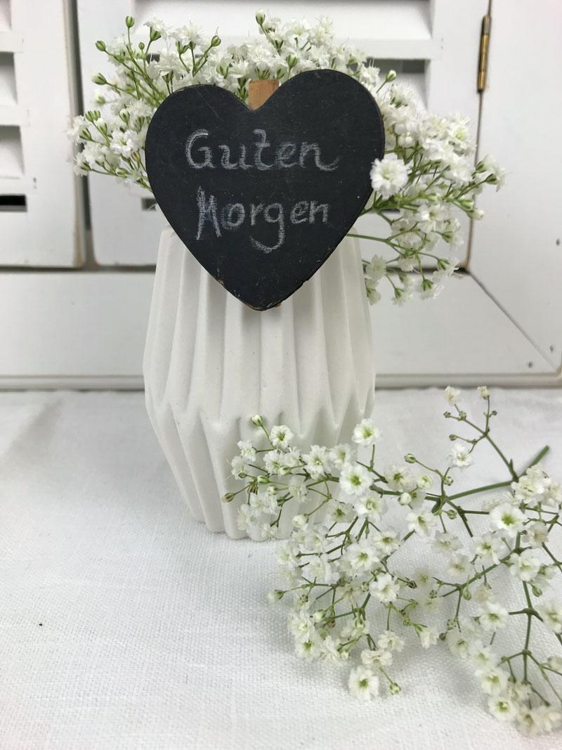 gm-schleier5