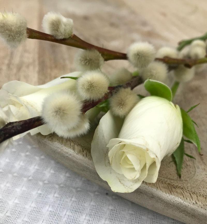 rosepalm21.jpg