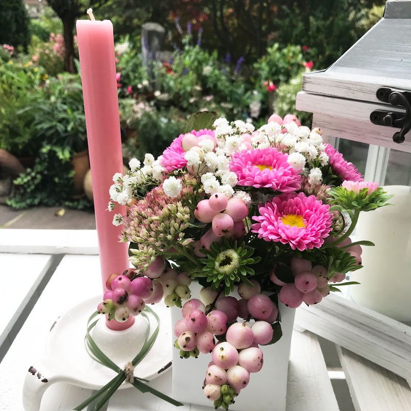 rosa4.jpg