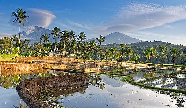 Indonesien Hoppe