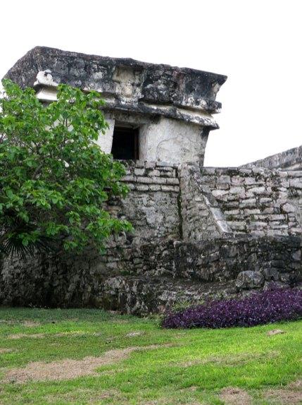 der alte Palast ist etwas zugewuchert