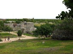 der Rasen wird gesprengt, schlau diese Maya