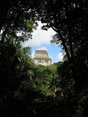 Tikal mitten in Dschungel