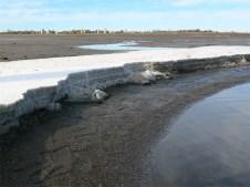 Die dicke Salzkruste am Seeufer.