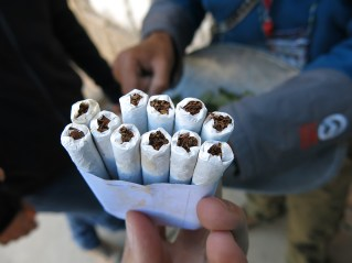 Zigaretten aus purem Tabak und ein paar Kokablättern.