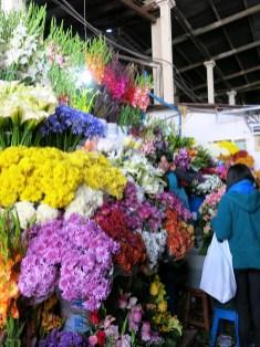 cusco_mercado_san_pedro_05