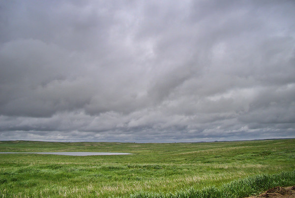 Prairie and Pothole