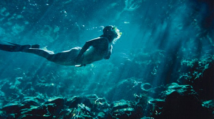 siankaan-wild-snorkel