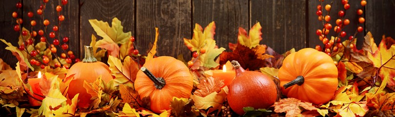 Hd Wallpaper Fall Leaf Change The Meaning And Symbolism Of The Word 171 Autumn 187