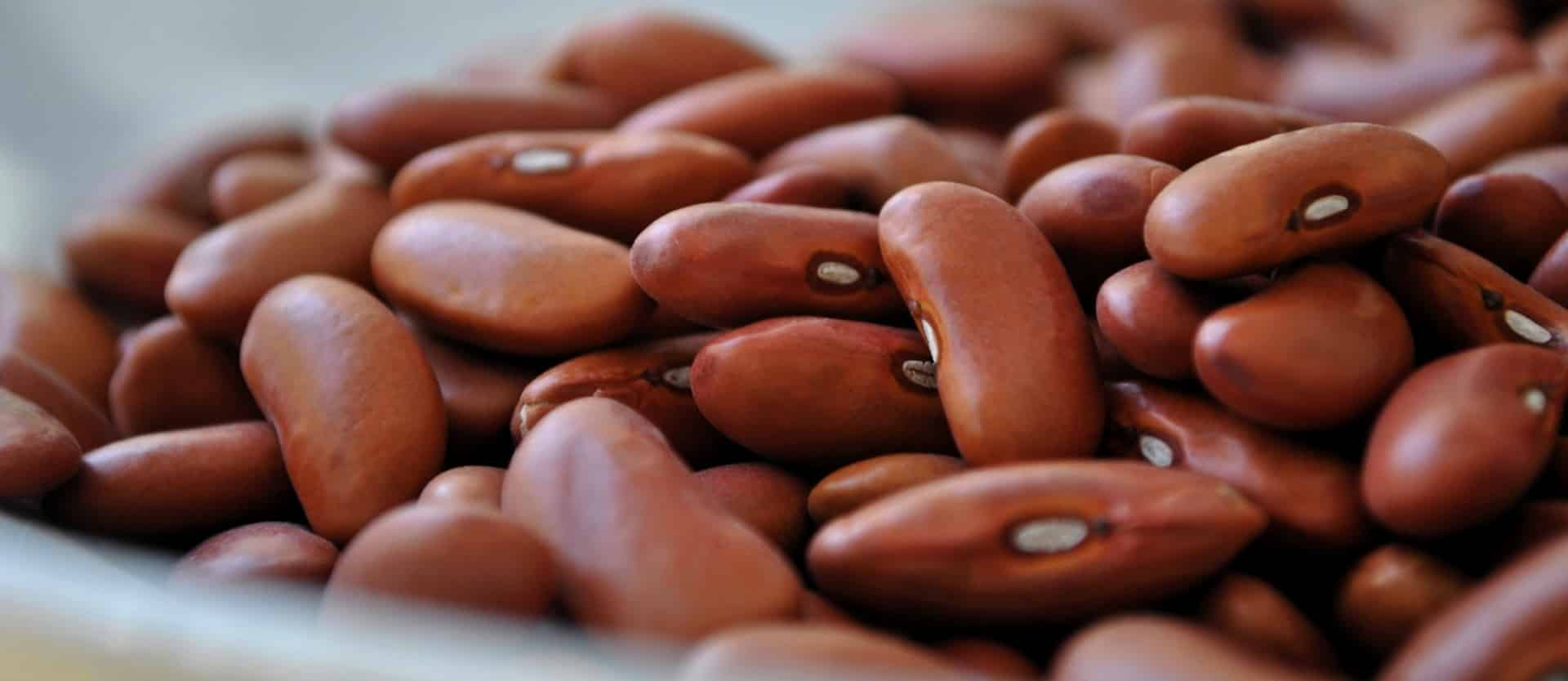 The meaning and symbolism of the word  Bean