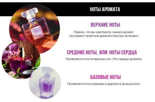 noty-aromata-1