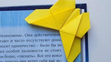 16-origami-babochka-shema