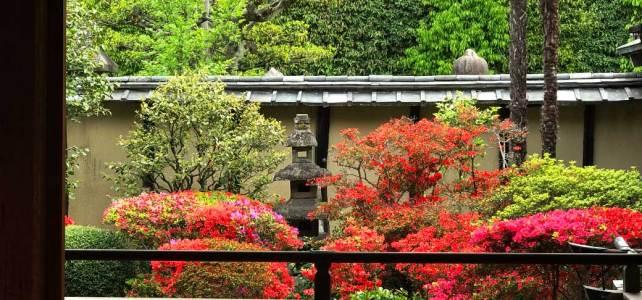 "Crimson garden in ""Shoden Eigen-in Temple"""