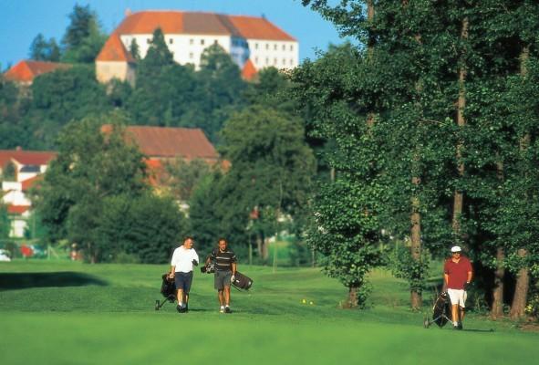 Гольф в городе Птуй Словения