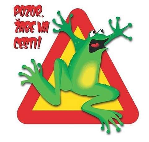 Наступила весна и словенские дорожные службы, вместе с волонтерами обновляют знаки «Pozor zabe» (Осторожно, жабы)