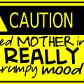 Warning: Grumpy Mom Alert {Honey, Don't Bother Me! Please}