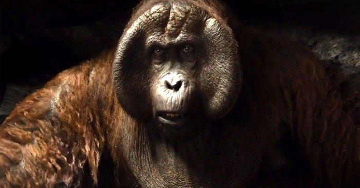 king-louie-Orangutan