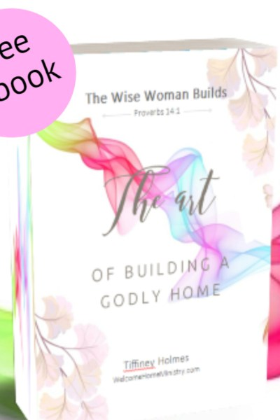 "Peep My New Ebook! ""The Wise Woman Builds: The Art of Building A Godly Home"""