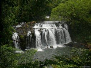 P1110984 Wallacha Falls
