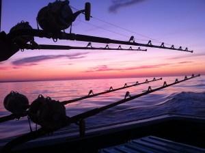 Ernie's Charter Fishing, North Lake PEI