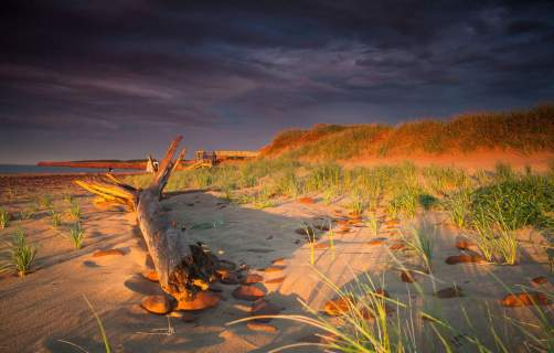 Photo by Dave Brosha ©Tourism PEI, Cavendish Beach