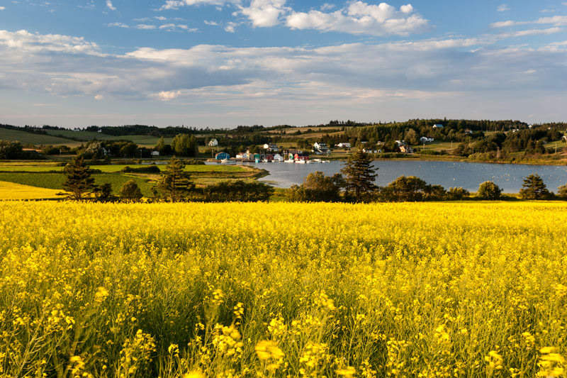 Photo by Stephen DesRoches ©Tourism PEI, French River