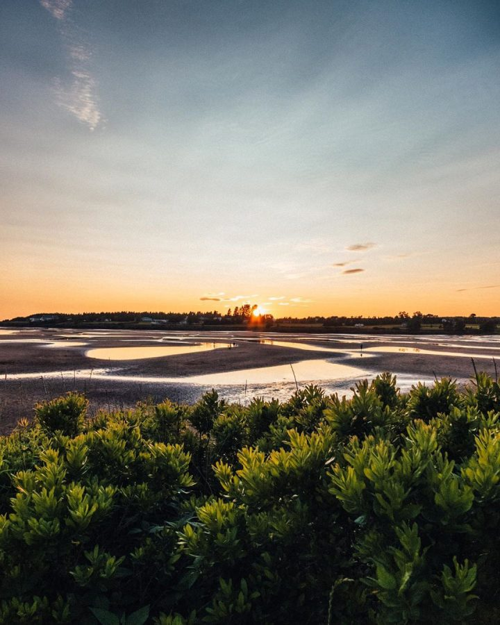Canoe Cove | Photo by Al Douglas