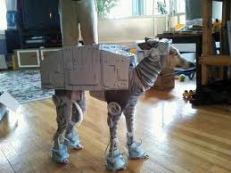 Star Wars dog for Halloween 2013