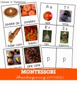Thanksgiving Activities: Montessori 3 part cards and beginning sound cards