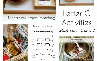 Montessori big cats and colour red activities