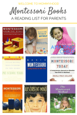 What's on my Montessori book shelf (for mom!)