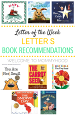 Letter S Book Recommendations