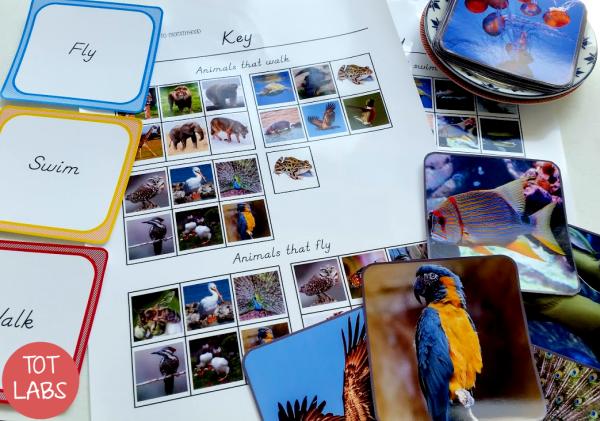 Montessori inspired walk, swim, fly animal sorting printables
