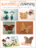 Butterfly learning resources
