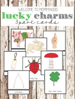 Montessori Lucky charms 3 part cards for St Patrick's Day