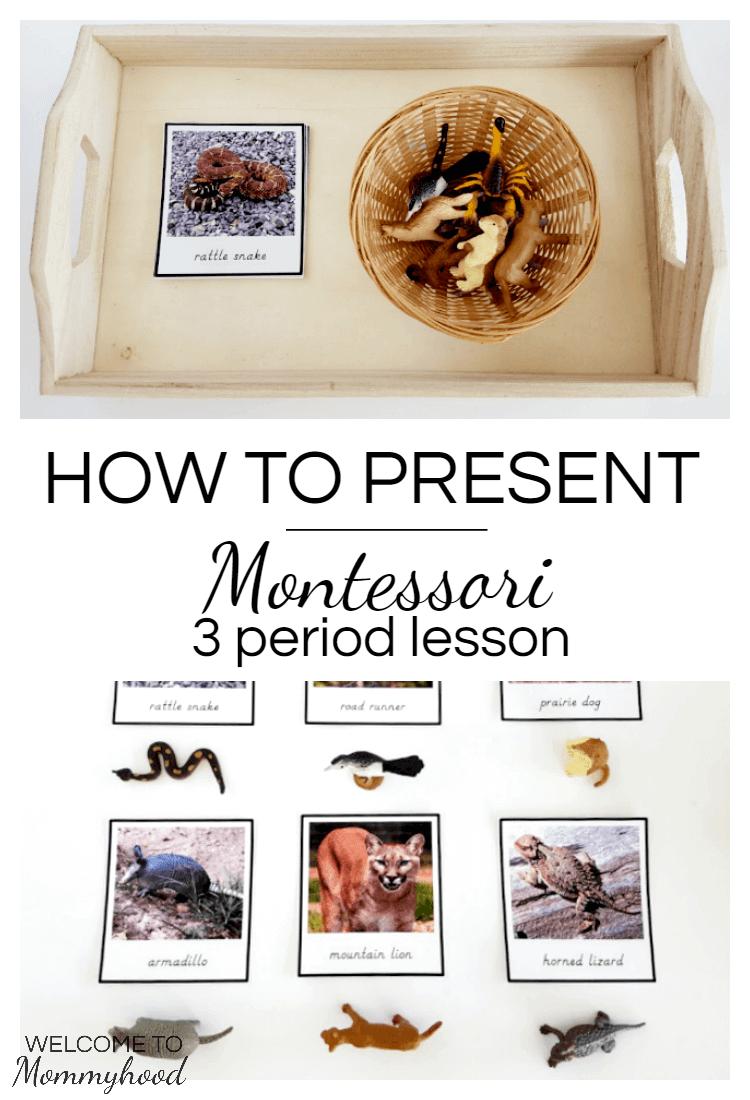 Montessori 3 Period Lesson For Presenting Language And New
