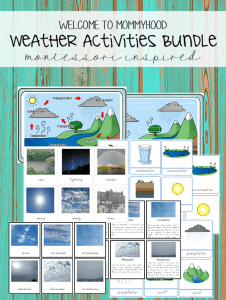 water cycle and weather bundle