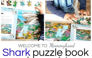 Montessori Books for Kids: puzzle books #montessoriactivities #sharkactivities
