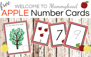 Montessori Apple Themed Number Cards. Fall themed activities. Fall Preschool Activities. Apple Activities.