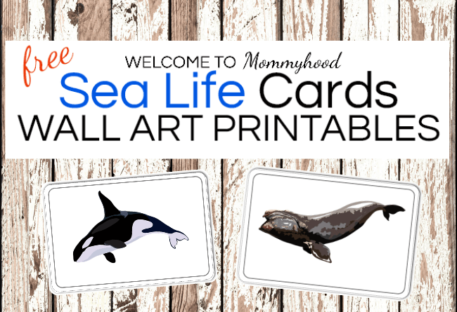 Montessori Ocean Animal Wall Art for babies or classrooms. Looking for beautiful decorations for your child's space? These gorgeous printables are available on the blog! Perfect for a Montessori bedroom or play space. #montessori #montessorihome